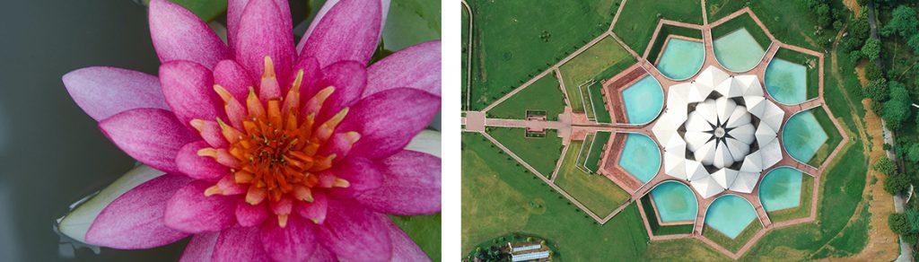Lotus Temple, New Dehli, Flower Architecture
